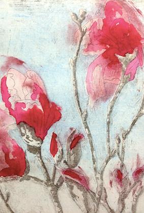 #33 Armidale magnolia IV (vii) greeting card