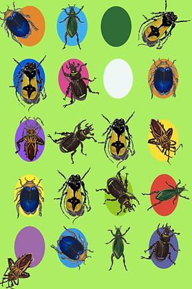 # 48 Bug spots x 6