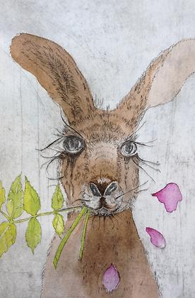 #35 Kangaroo morning greeting card