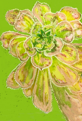 A3 Juicy lucy (succulent) digital print