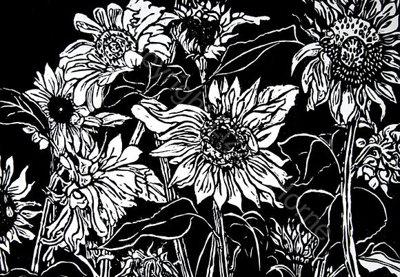 Camille's sunflowers, Hasparren 4/10