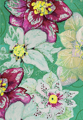 #27 Helleborus greeting card
