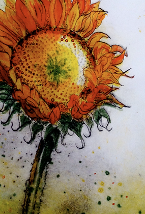 #8 Santa Fe sunflower greeting card