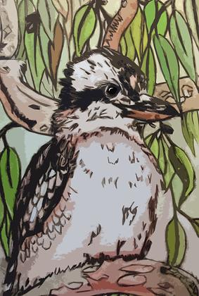 #61 Little kookaburra greeting card