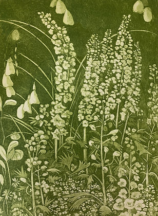 Ramblers iii (delphiniums)