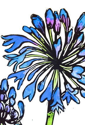 #2 Agapanthus  linocut  greeting card