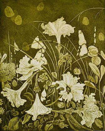 Ramblers, too (the petunias)