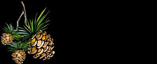 carolina-home-mortgage-logo1.png