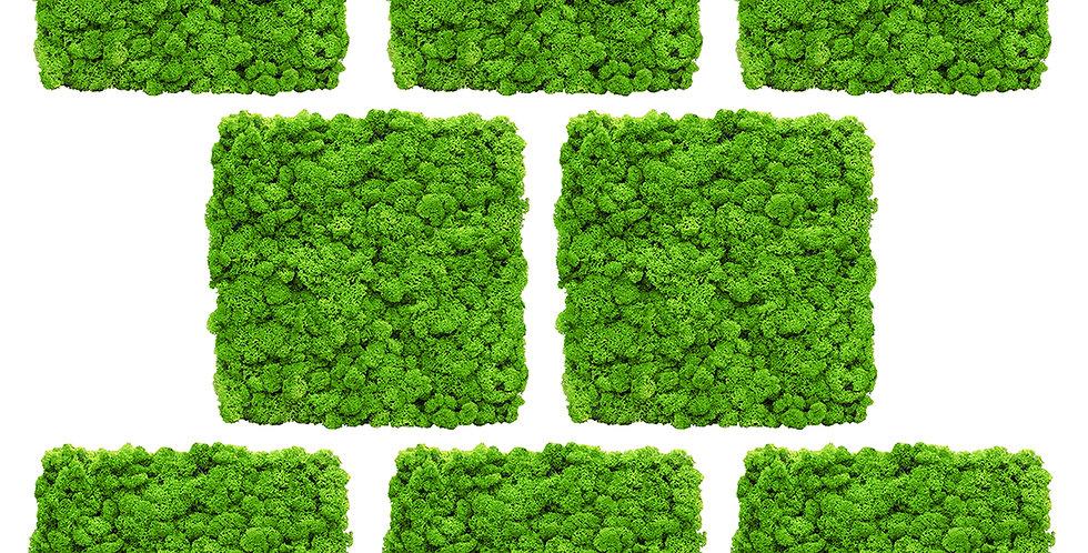 "Комплект панелей 1 кв.м. ""Мох ярко зеленый"" (35х35) 8 шт"
