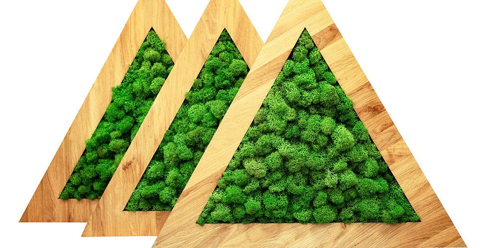Комплект треугольных картин d40