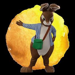 Book Brown Rabbit
