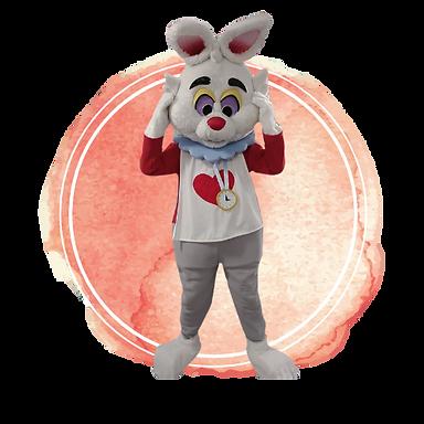 Brisbane White Rabbit  Birthday Party Ma