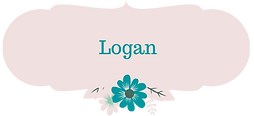 Logan Entertainment