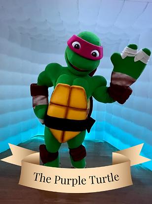 Donatello Teenage Mutant Ninja Turtles.png