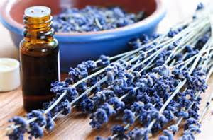 About Essential Oils