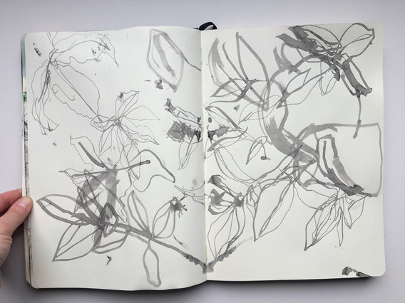 Ink Sketchbook Drawing of foliage by Jo Blaker