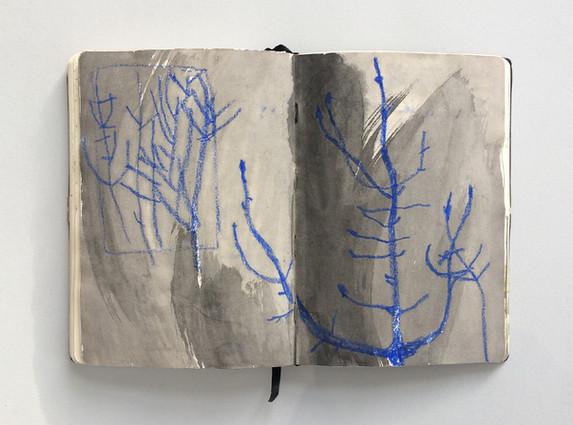 Observational Sketchbook Drawing of Trees by Jo Blaker