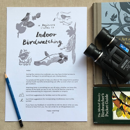 Indoor Birdwatching - Beginners Guide