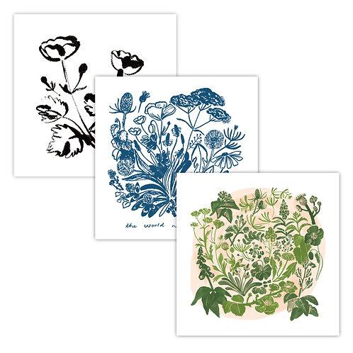 Wild Flora Postcard Pack