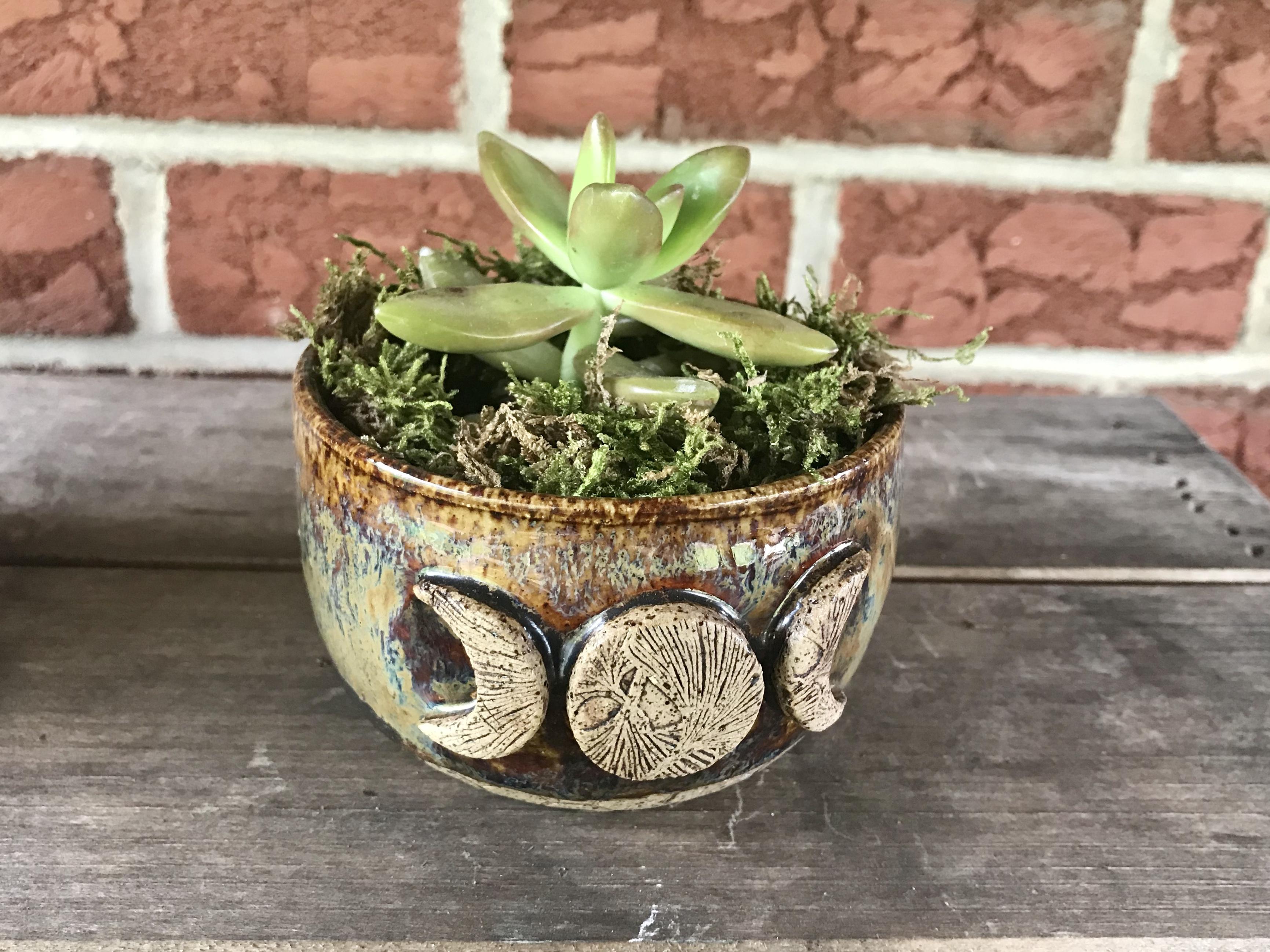 Moon phase Succulent Planter