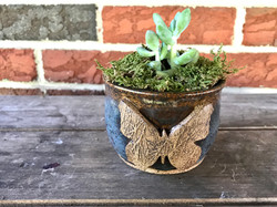 Butterfly Succulent Planter