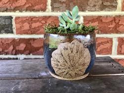 Flower Succulent Planter