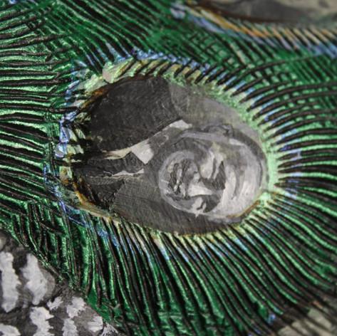 El Peacock Pasa
