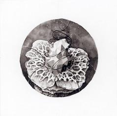 Samahdi Blossom