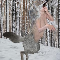 Werewolf in Winter