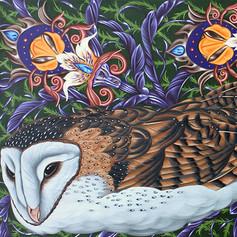 Americana #20 Barn Owl