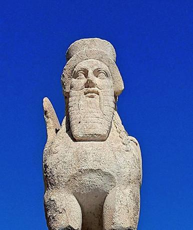 bearded sfinx.jpg