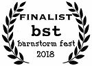 finalist laurels 2018 (1).jpg