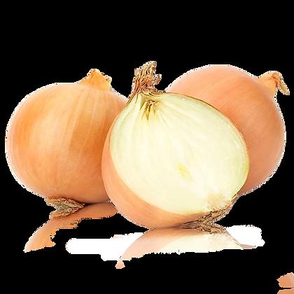 Cebolla x Kg