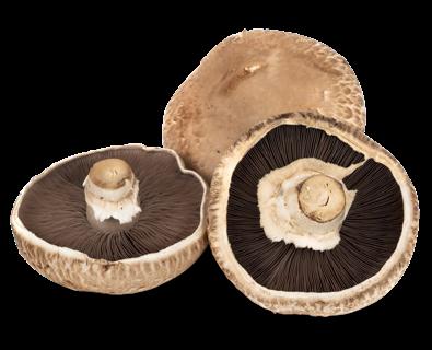 Portobello (180 gramos Aprox.)