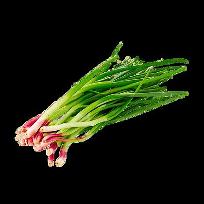 Cebolla de verdeo (250 gramos Aprox)