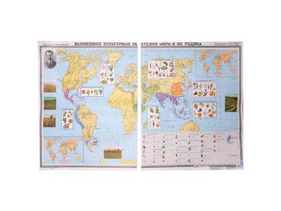"""Учебная карта """"Важнейшие культурные растения мира и их родина"""""""