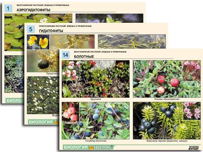 """Комплект таблиц по ботанике раздат. """"Многообразие растений. Водные и прибрежные"""""""