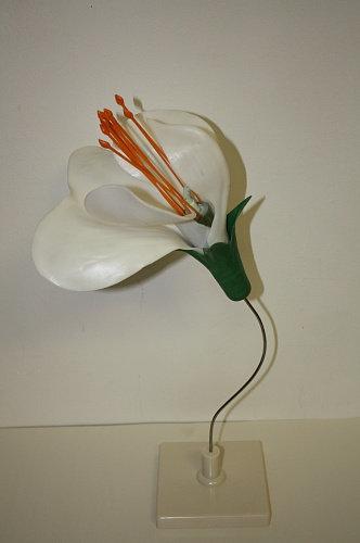 Модель Цветок гороха