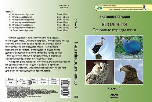 DVD Основные отряды птиц. Часть 2