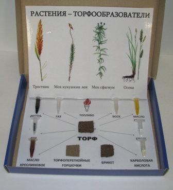 Коллекция Торф и продукты его переработки