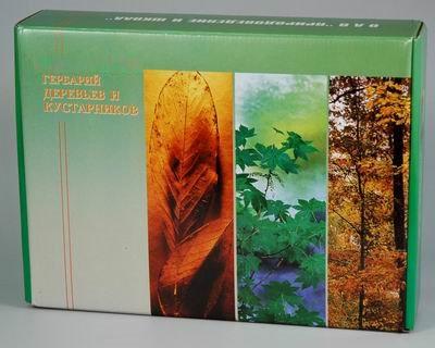 Гербарий Деревья и кустарники (20 видов)