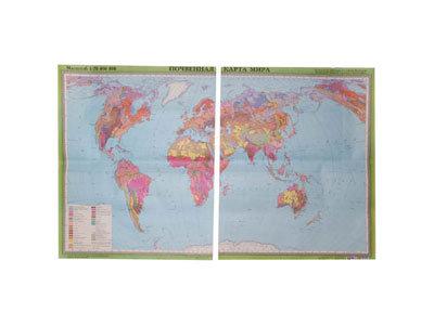 """Учебная карта """"Почвенная карта мира"""" (матовое, 2-стороннее лам.)"""