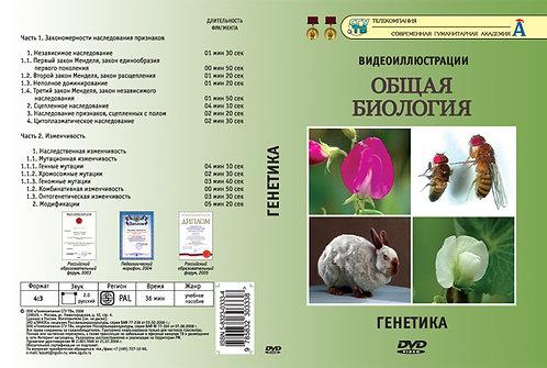 DVD Генетика