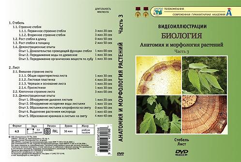 DVD Анатомия и морфология растений ч. 3 (Стебель. Лист)