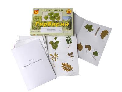 """Гербарий """"Морфология растений"""" (6 тем, 30 видов)"""