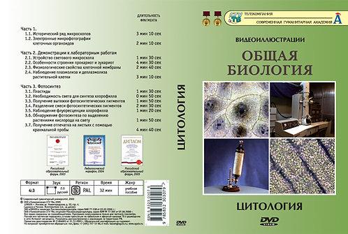 DVD Цитология (13 фрагментов)