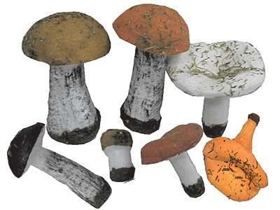 Набор муляжей грибов