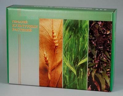 Гербарий Культурные растения (28 видов)
