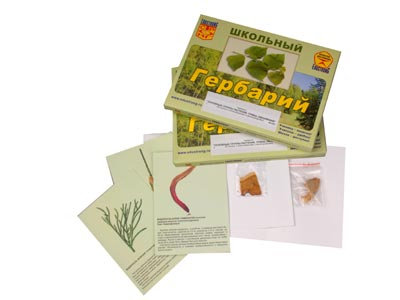 """Гербарий """"Основные группы растений. Грибы. Лишайники"""" (53 листа, с иллюстрациями"""