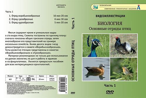 DVD Основные отряды птиц. Часть 1